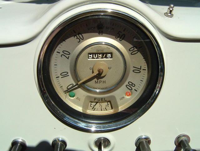 Speedo 9-22-17.JPG